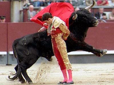 の 歌 士 闘牛